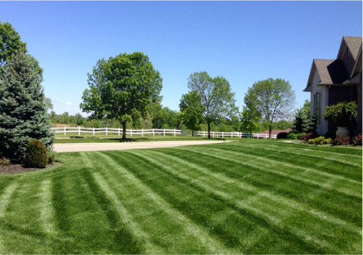 Syracuse Lawn Mowing | Marathon Grounds Care